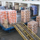 loading pallets in trucks