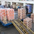 loading pallets in trucks